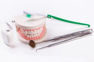 Artificial teeth | toothbrush | dental mirror